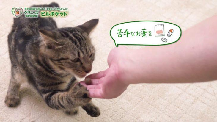 グリニーズ™ 獣医師専用 ピルポケット™ 猫用