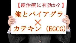 俺とバイアグラとカテキン(EGCG) 癌治療に有効か?
