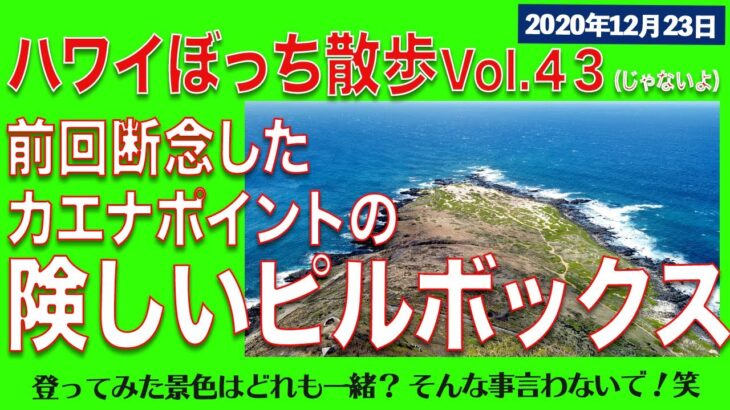 4K【ハワイ旅行】まだあるハワイのピルボックス、カエナポイント。ご褒美はカフク シュリンプ!